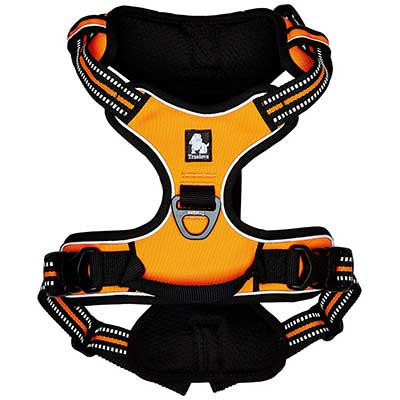 Chai's Choice Outdoor Adventure Dog Harness with Two Leash Attachments