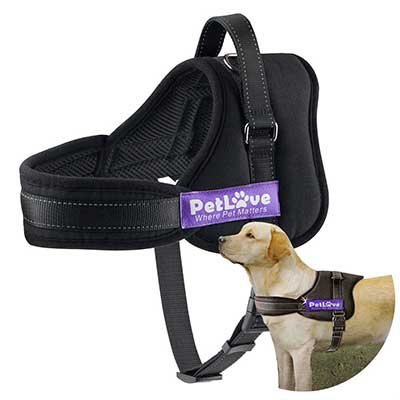 PetLove Dog Harness, Soft Leash Padded No Pull All Size Dogs