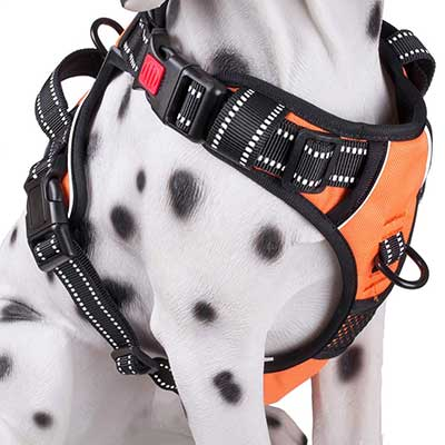PoyPet No Pull Dog Harness with Front & Back 2 Leash Attachments