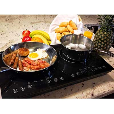 Evergreen Home Double Digital Induction cooker