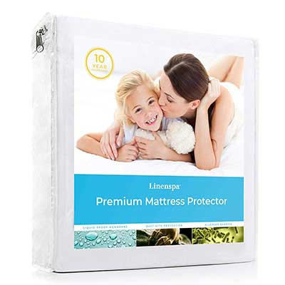 Linenspa LS0PFFMP Premium Smooth Fabric Mattress Protector