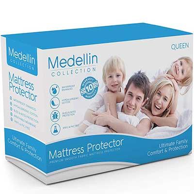 Medellin Collection Premium Hypoallergenic Waterproof Queen Mattress Protector
