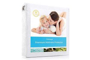 best mattress protector reviews