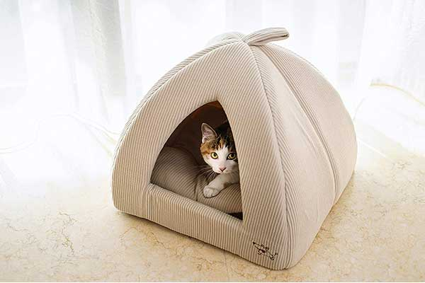 Best Pet Supplies Pet Tent Soft Bed for Dog & Cat