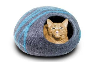 best cat bed reviews