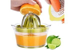 best citrus juicers reviews