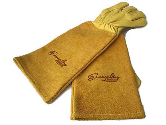 Exemplary Gardens Unisex Thorn Proof Goatskin Gloves