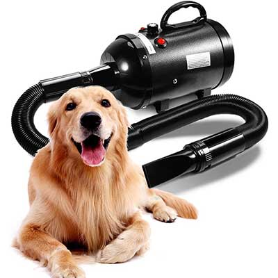 AIIYME Adjustable Speed Dog Hair Dryer