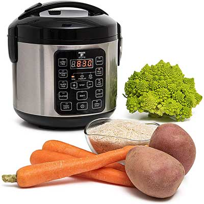 Moss & Stone Electric Multicooker Digital Food Steamer
