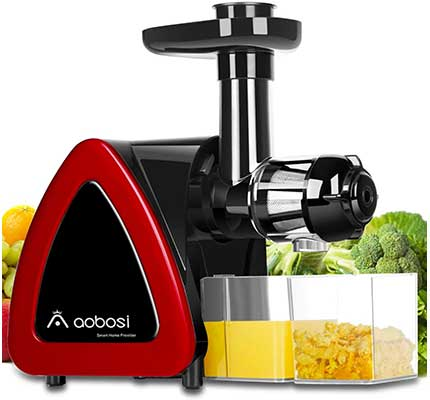 Aobosi 2-Speed Slow Masticating juicer Extractor
